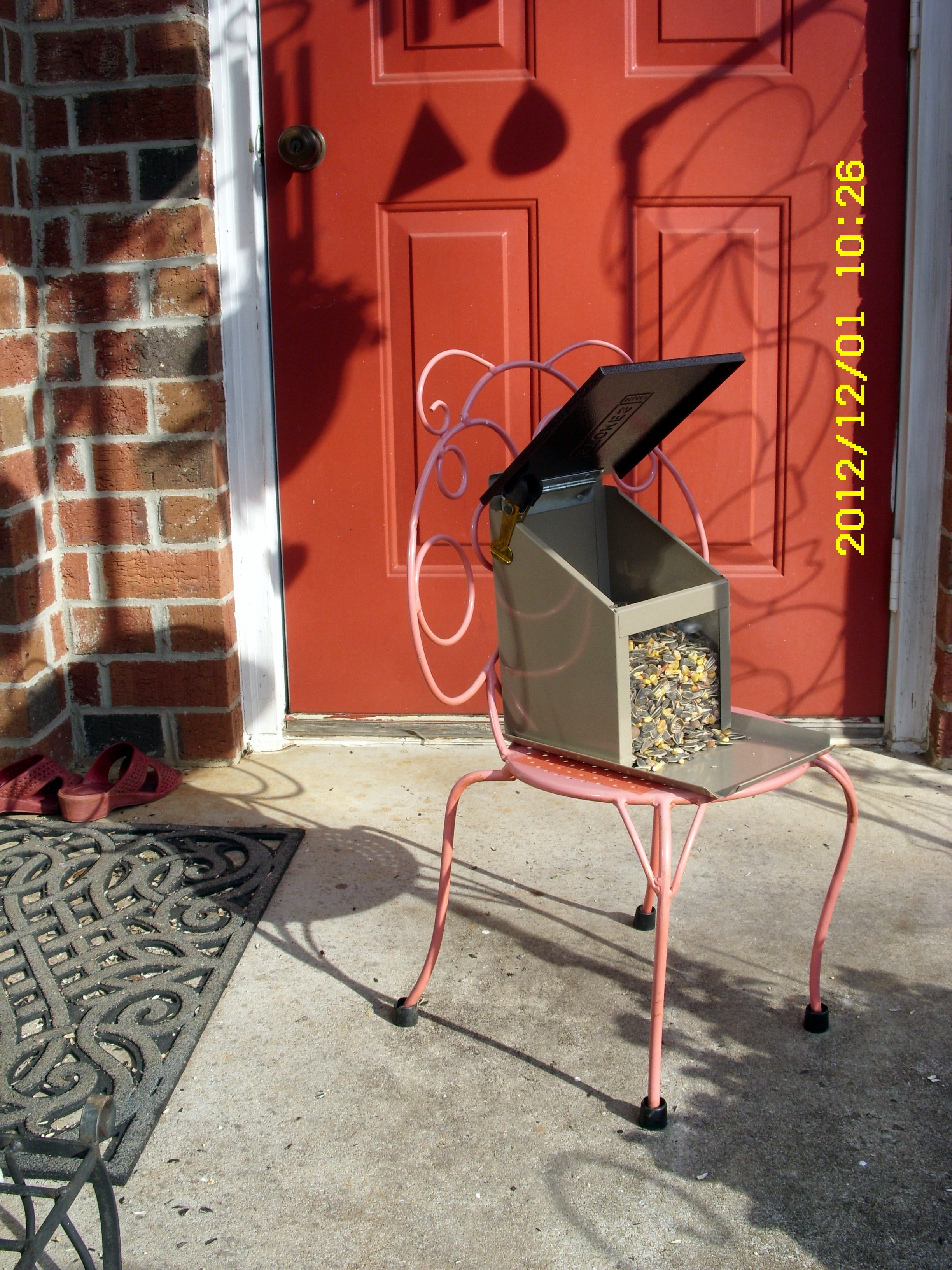 Almost Indestructible Metal Squirrel Feeder On Small Metal Chair.