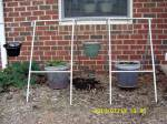 Hanging pails in front yard