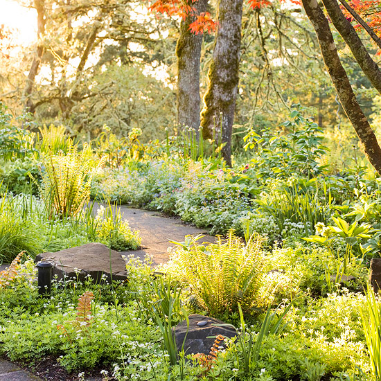 Whimsical landscaping design ideas three quarters counting for Landscaping ideas for wooded areas