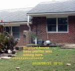 The Bluebird House sat here