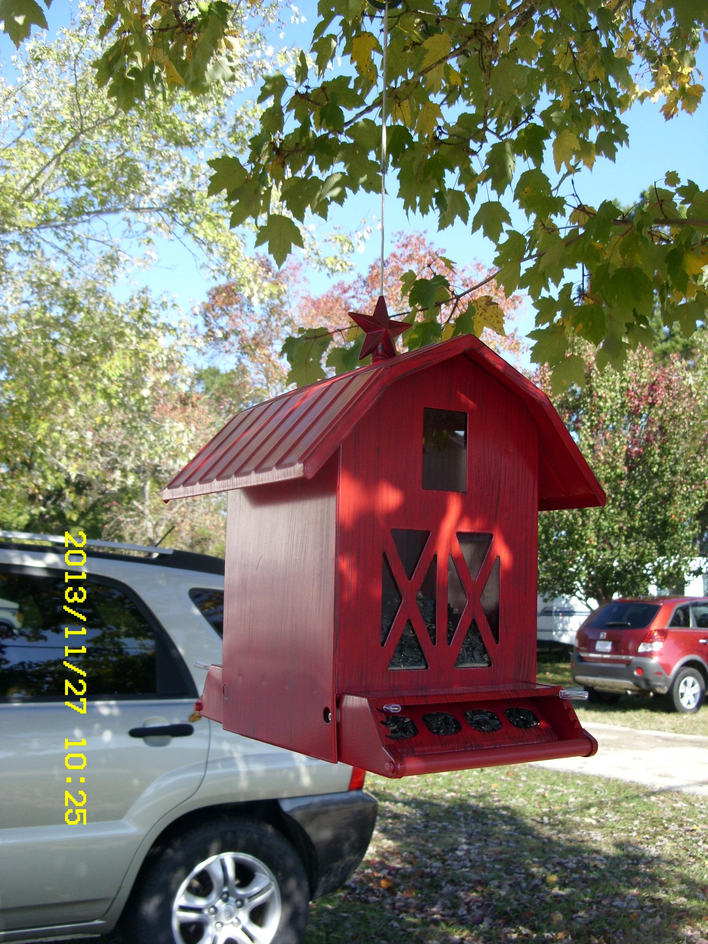 bird house plans north carolina