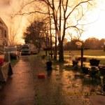 Flooded yard #4