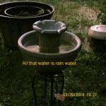 Rain water in fountain