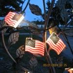 Close up of illuminated flags