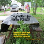 Tarp covering mattress