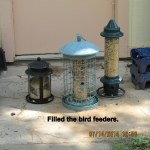 Filled the bird feeders