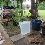 Rain water full