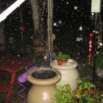 Rain drops visible