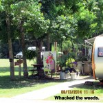 Whacking weeds (3)