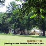 From Sam's yard