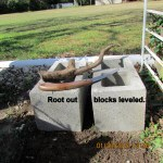 Root out and blocks leveled