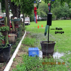 Rain gauge in broad view