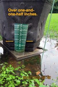 Rain gauge (2)