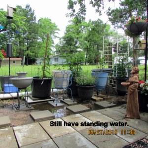 Standing water (2)