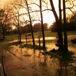 Sunset over flooded yard