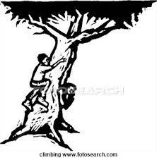 Climbing the family tree in black and white