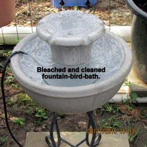 Bleached fountain