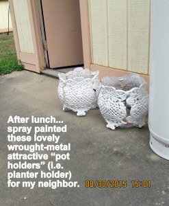 Spray painted plant holders