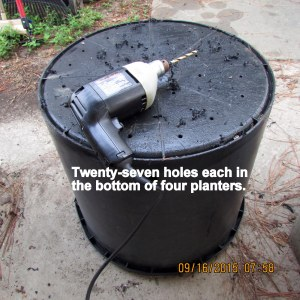 Drilling holes in bottom of planter