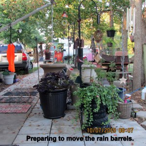 Preparing to move rain barrels