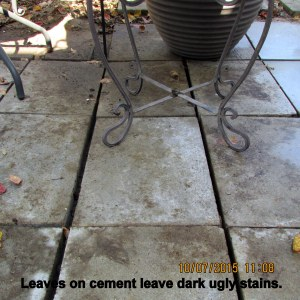 Stains on cement