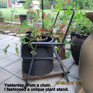 Chair for the planter