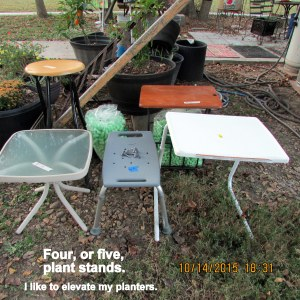 Four, or five, plant stands