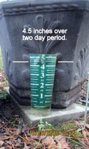 Rain total