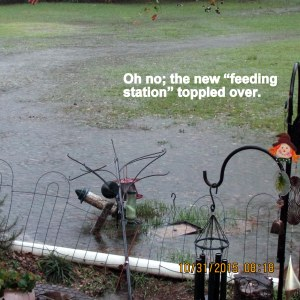 Feeding station is down