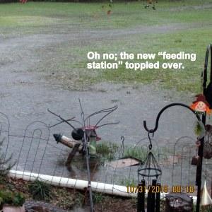 Feeding station is down