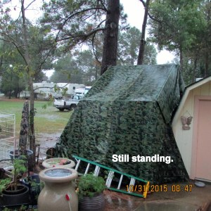 Shelter is still standing
