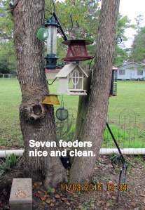 Seven clean feeders
