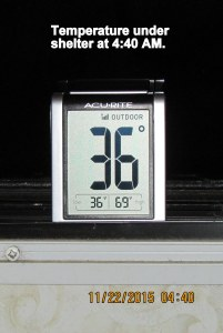 Temperature at four-forty in shelter