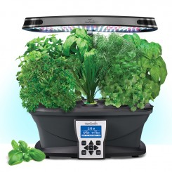 AeroGarden with lettuce