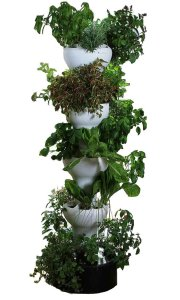 Foody 8 vertical garden