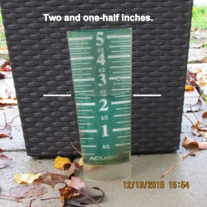 Two inches in rain gauge