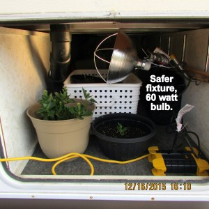 Grow light in place
