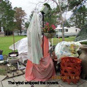 Wind whipped covers