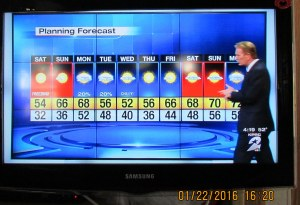 One week weather forecast