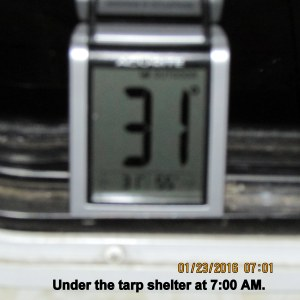Temperature at seven under tarp shelter