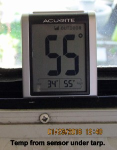 Temperature from sensor under tarp shelter