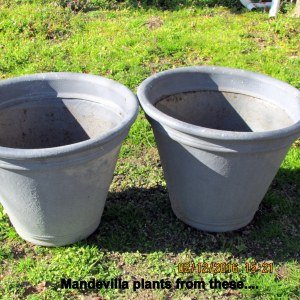 Two large gray planters