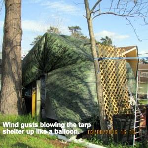 Tarp shelter like a balloon