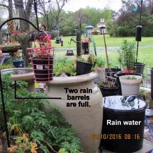 Full rain barrels