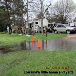 Lorraine's yard