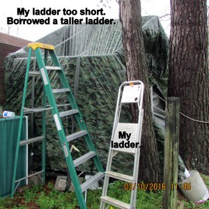 Taller ladder needed