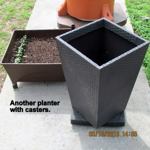Caster dolly on planter