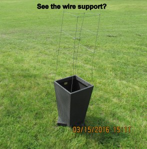 See the wire support?