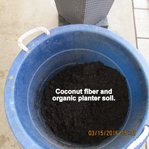 Coconut fiber and organic soil