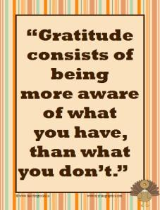 Gratitude consists of (poster)